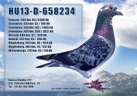 HU13-D-658234-H_1