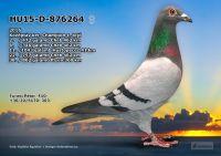 HU15-D-876264-T---OK3