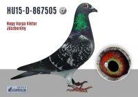 HU-15-D-867505---OK_resize