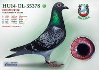 HU14-OL-35378-T
